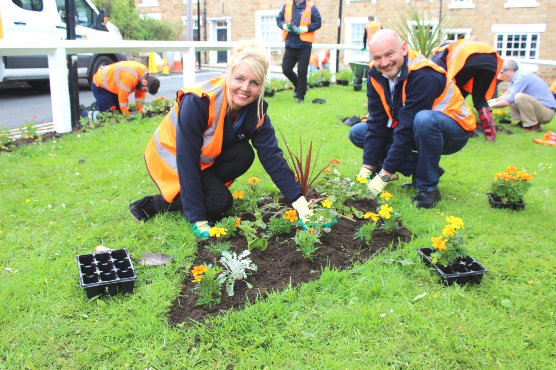 Estate Blooms With Community Planting Scheme East Durham News